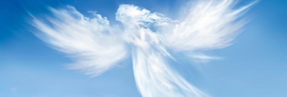 GUARDIAN ANGEL PROGRAM